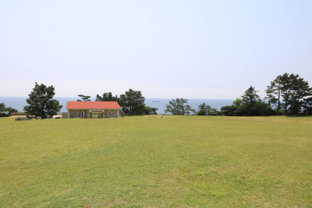 潮岬望楼の芝